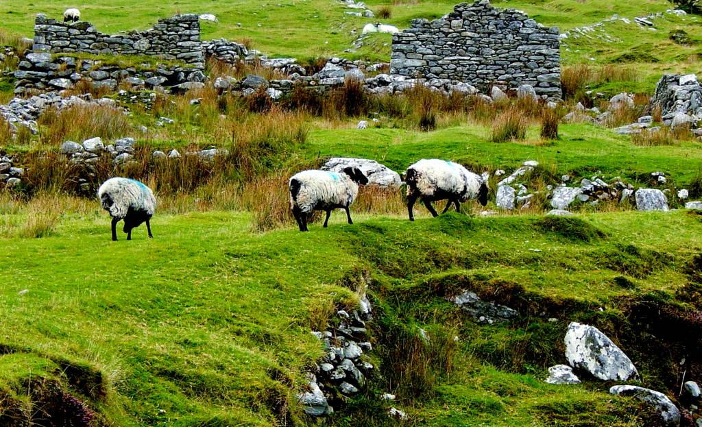 deserted village achill